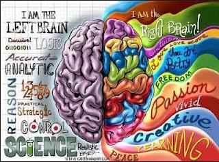 Imagen de un cerebro con sus dos lateralidades