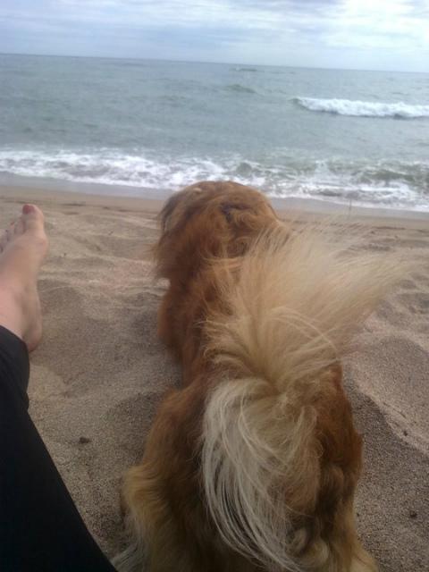 Con Nino en la playa-emotuner